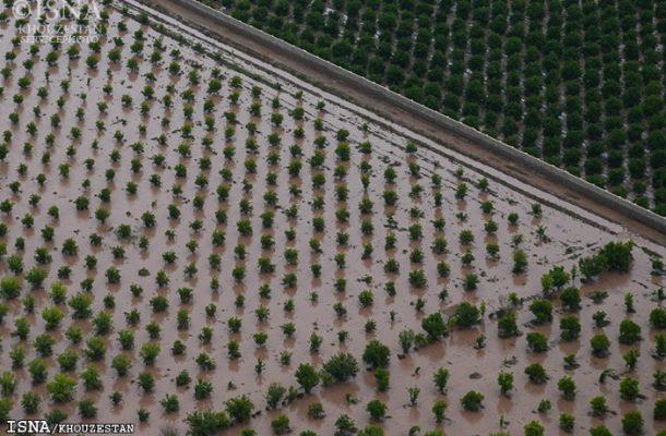 آغاز پرداخت خسارت کشاورزان خوزستانی