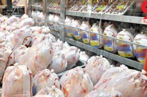 عامل اساسی گرانی مرغ