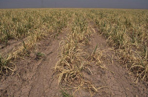 ۲۳۰میلیاردریال خسارت خشکسالی و سیل ۹۵ خوزستان تامین شد