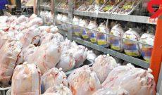 بازار مرغ در دست دلالان