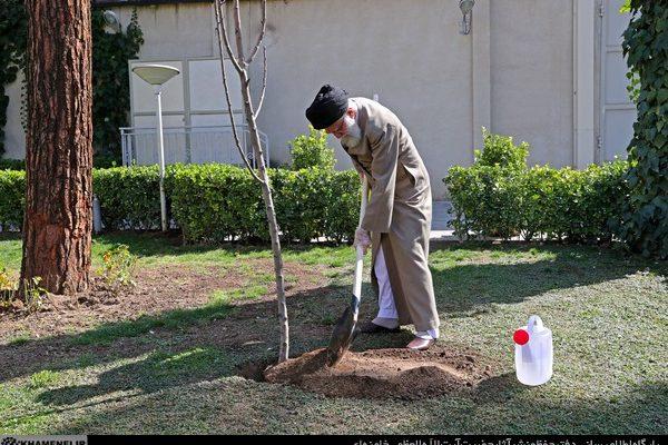گزارش تصویری| رهبری معظم انقلاب در آستانه روز درختکاری نهال غرص کردند