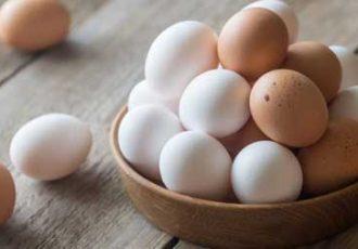 اقتصادی توقف صادارت تخم مرغ تصمیمی اشتباه است/ صادرات بازار داخل را متعادل میکند